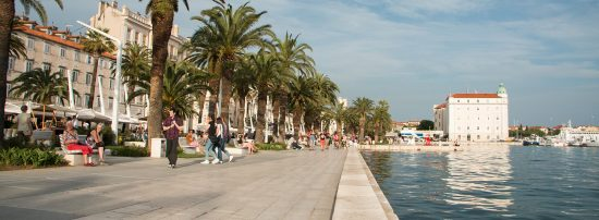 The palms along the waterfront promenade in Split